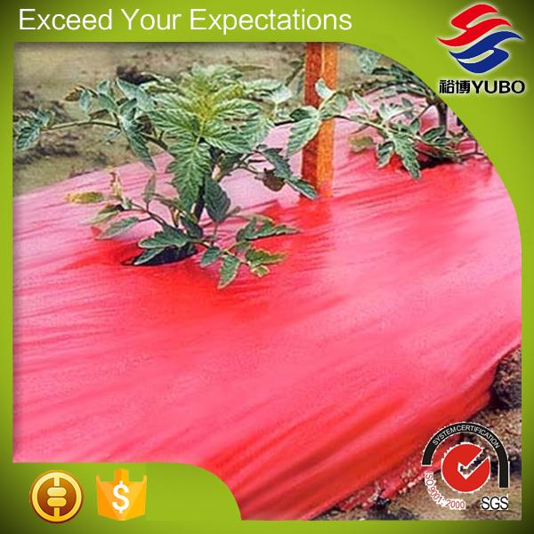Red Plastic Mulch Film For Tomato, garden plastic sheeting best mulching supplier