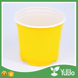 16.5cm Yellow Garden Plant Containers, Garden Plant in a Flower Pot