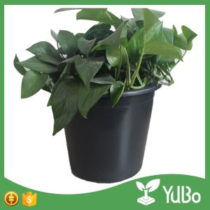 15 Gallon Black Plastic Nursery Pot For Plants