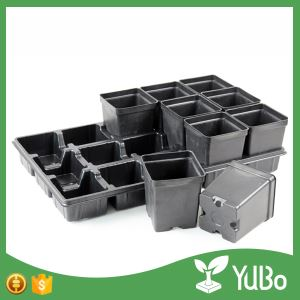 10.5*8.5*12.5cm Square Garden Plastic Flower Plant Pots Suppliers