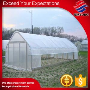1-3year uv warranty plastic greenhouse films, greenhouse covering supplier