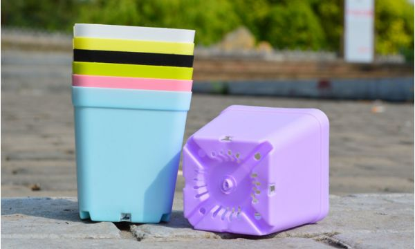 large coloured plastic plant pots