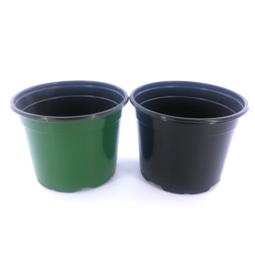 11cm Black Flower In Pot Nursery Pots