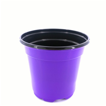 10 Cm Patio Plant Flower Pots