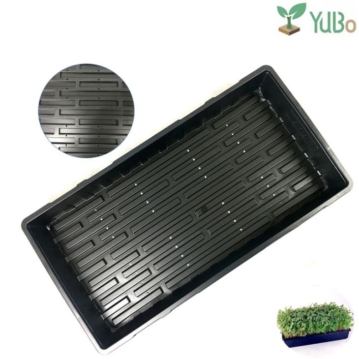 Seed Starting Flats Trays Tray Without Holes