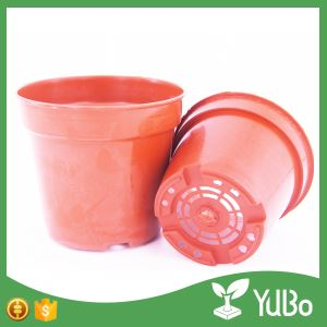 10.7cm Round Gardening Containers, Gardening At Home In Pots