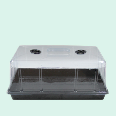 Plant Flat Tray For Indoor Planting Seeds, Bottom Watering Seed Trays